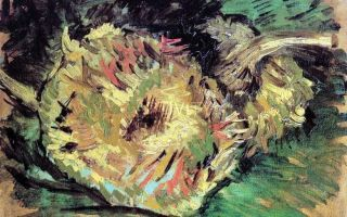 Описание серии картин винсента виллема ван гога « два срезанных подсолнуха»