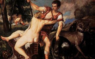 Описание картины тициана «венера и адонис»