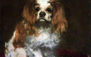 Описание картины эдуарда мане «голова собаки»