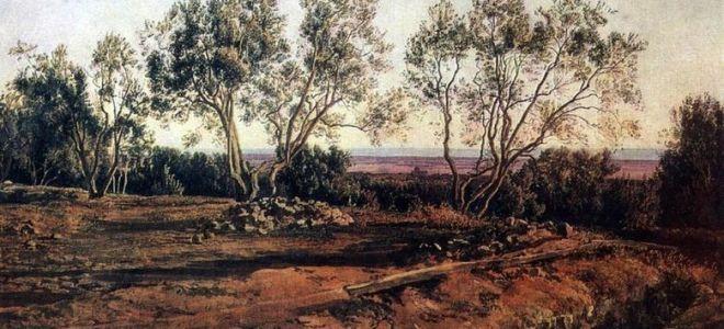 Описание картины александра иванова «оливы у кладбища в альбано. молодой месяц»