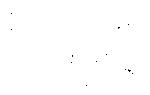 Описание гравюры альбрехта дюрера «носорог»