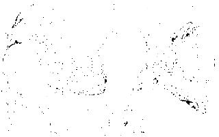 Описание картины анри матисса «радость жизни»