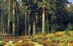 Описание картины ивана шишкина «корабельный лес»