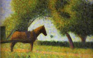 Описание картины жоржа сёра «лошадь»