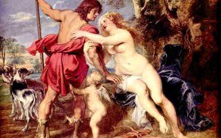 Описание картины питера рубенса «венера и адонис»