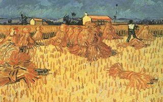 Описание картины винсента виллема ван гога «урожай»