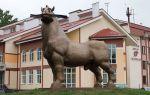 Описание памятника коню в воронеже