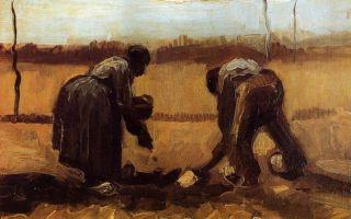 Описание картины винсента ван гога «крестьянин и крестьянка, сажающие картофель»