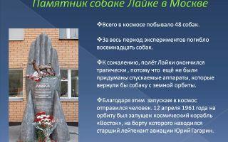Описание памятника лайке